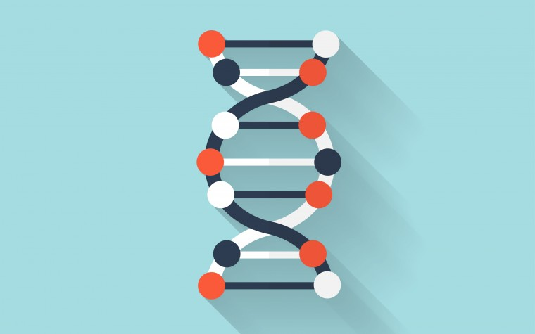 BPH, genes, and drug therapy