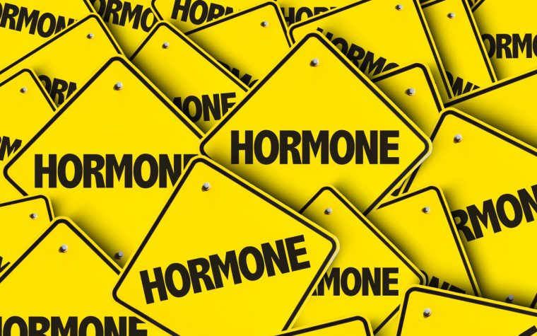 sex hormones and BPH